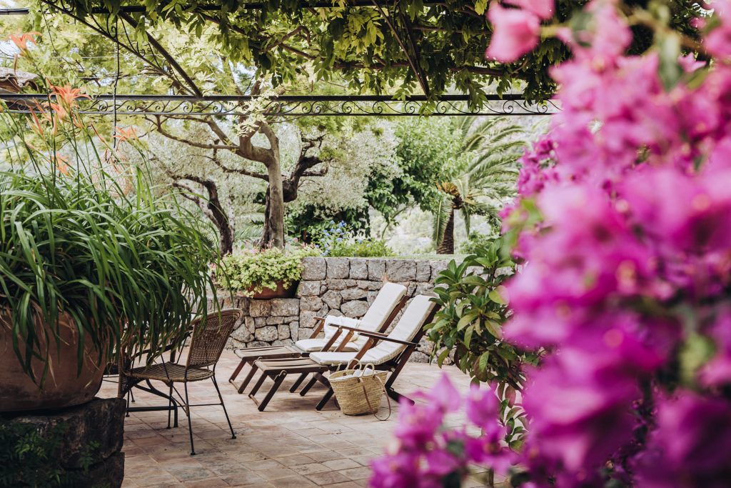 avenue-soller-valley-deckchairs-flowers