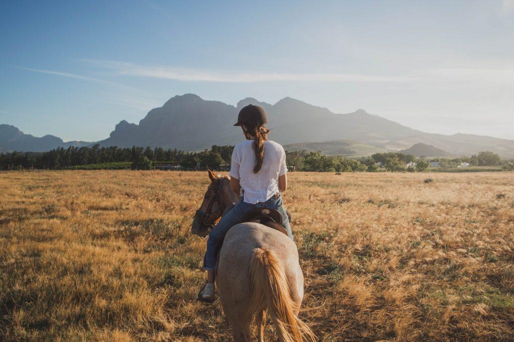 horses-things-to-do-jpg-jpg-7