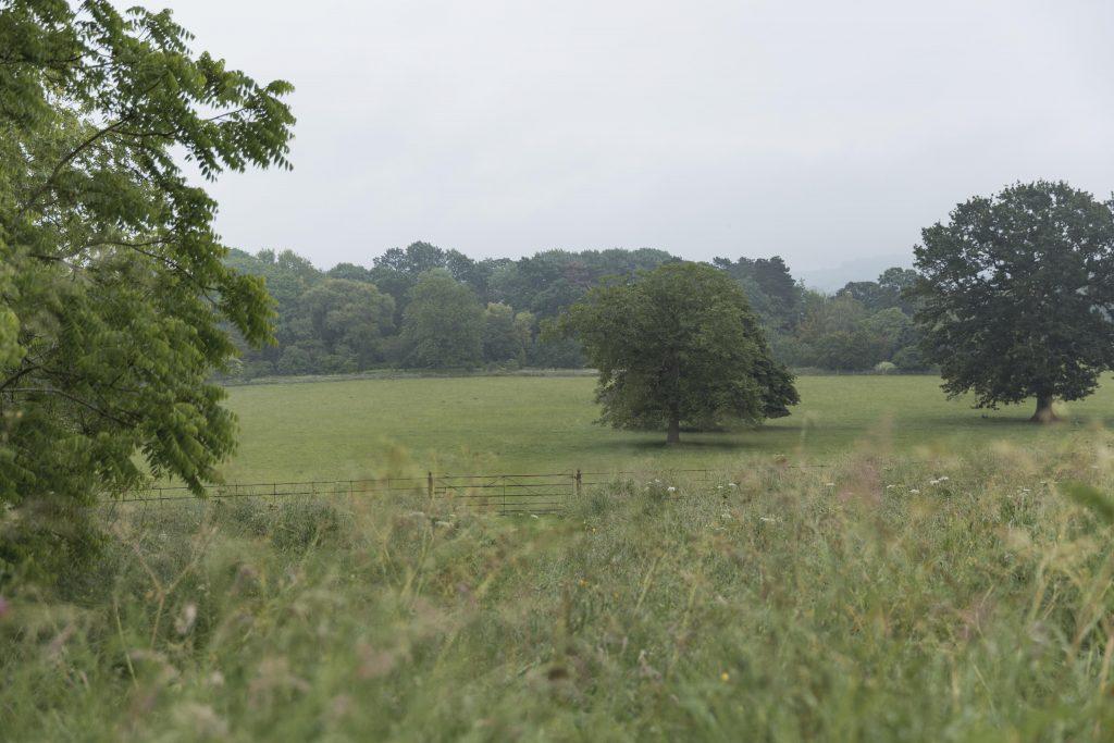 norton-hill-view-jpg-1024x683.jpg