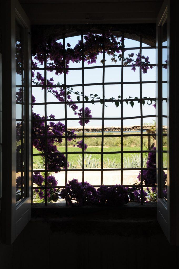 sicily-italy-luxury-villa-view-jpg-jpg