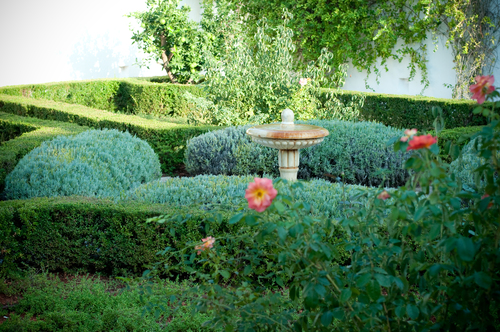 garden-162235231860b321be72f08-jpg