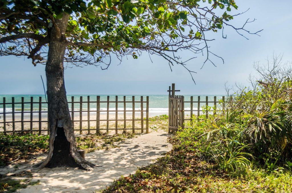 beach-views162235814660b33882ac5c0-jpg