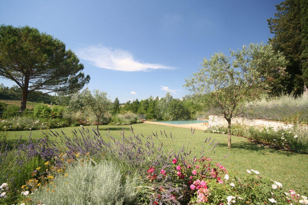 garden-162237035660b36834d11ca-jpg