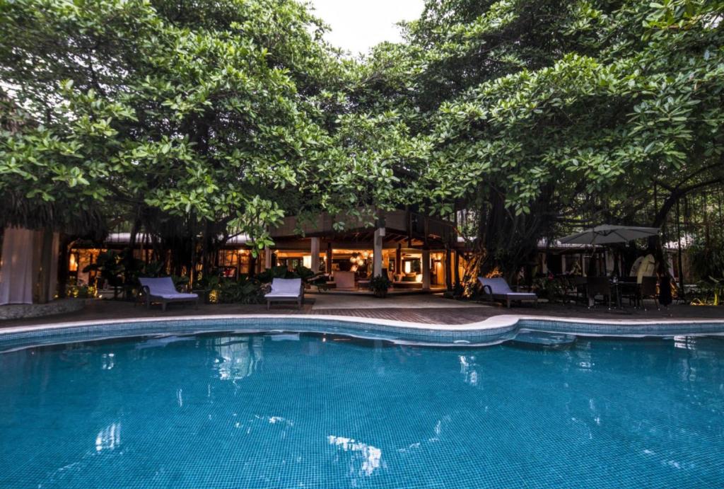 avenue-casa-capitan-pool-4162244787860b49706b7e6b-png
