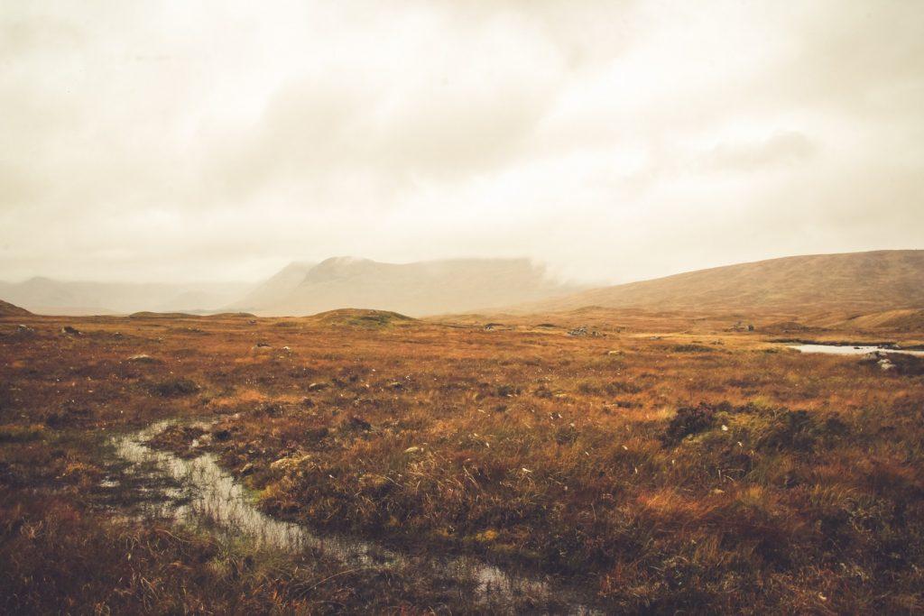 scotland-grass-162254013060b5ff6240bea-jpg