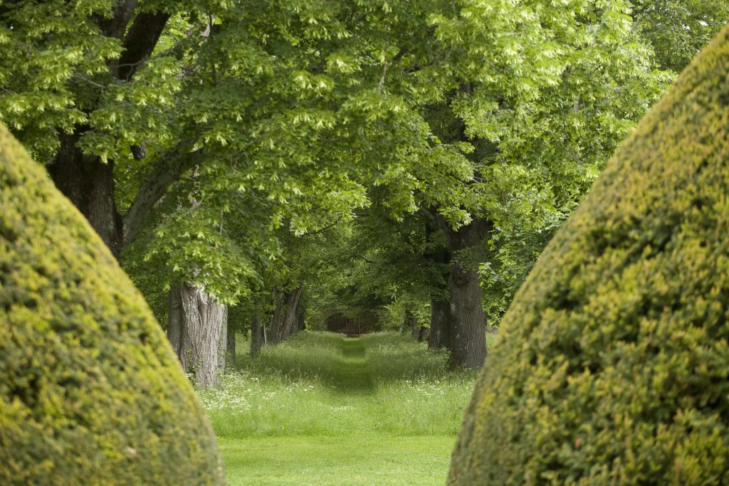 avenue-chateau-bourlie-exterior-2162255661060b63fc213dad-jpg