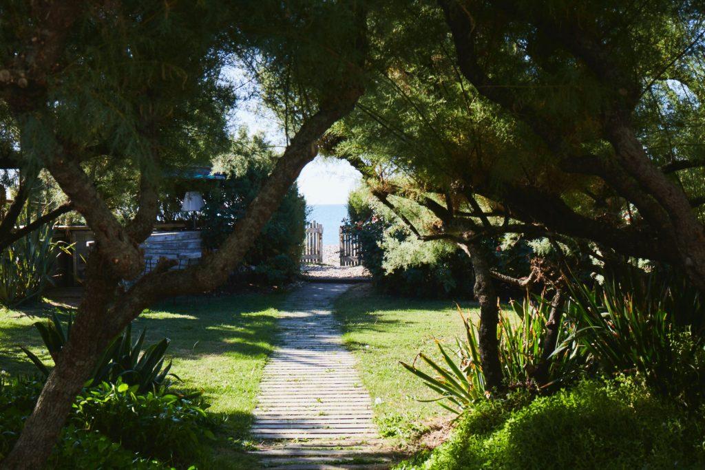 Garden_Overview_012-1024x683.jpeg